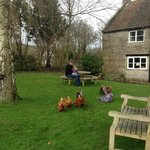 Bilde fra Middlewick Holiday Cottages