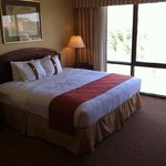 Foto van Holiday Inn Lubbock-Hotel & Towers