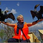 Contact closely with cormorants on Li River cruise