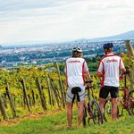 Guided Mountainbike Tours - speziell mit E-MTB's