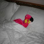 Kev the Flamingo thought the bed was very comfy