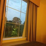 Fairfield Inn & Suites Houston Intercontinental Airport Foto