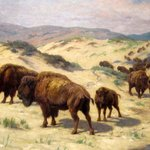 """""""Buffalo Watering"""" Georges-Frederic Rotig"""