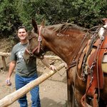 """Husband with his mount - BLM mustang """"Snoopy"""""""