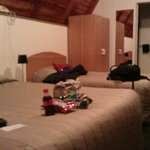 Foto van Mountain Chalet Motels