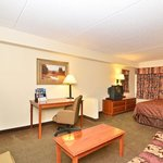 BEST WESTERN Raleigh Inn & Suites resmi