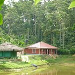 Coorg Guest House照片