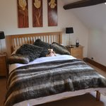 Foto de Rhandregynwen Hall Bed & Breakfast