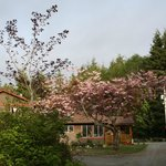 The Outside Inn - Country Cottages & Barn Lofts의 사진