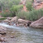 Foto de Zion Canyon Campground