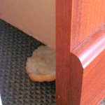 Biscuit behind the dresser and they don't serve any food here.