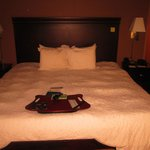 Hampton Inn & Suites Omaha - Downtown resmi
