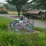 Foto van Wells Beach Resort Campground