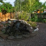 Beautiful and relaxing water features in the gardens