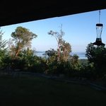 Arbutus Bluff Bed and Breakfast resmi