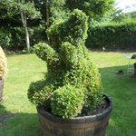 Topiary of a bear