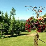 ภาพถ่ายของ Tree Top Lodge of Idaho Bed and Breakfast