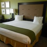 Φωτογραφία: Holiday Inn Express Hotel & Suites Savannah-Midtown