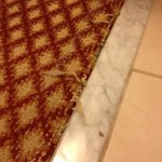 frayed carpet at bathroom threshold
