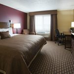 Single King Guestroom - Relax in Style with Flat Screen TV and Cable