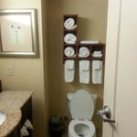 Φωτογραφία: Hampton Inn Moss Point
