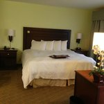 Hampton Inn & Suites Dallas-Arlington-South Foto