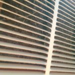 The air conditioner filter in room 203 I don't think it has been changed in years you should be