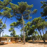 less then 50 mts away from the sea, Mobile Homes Club - top accommodation