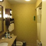 Hampton Inn Charleston - Historic District Foto