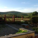 Bilde fra Brynhaul Bed and Breakfast