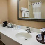 Hampton Inn Mt. Pleasant Foto