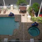 Bilde fra Holiday Inn Hotel & Suites Orange Park