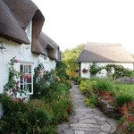 Foto de Honeycombe Cottage B&B