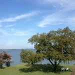 Lodgecliffe on the Choptank B&B Foto
