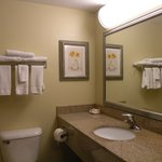 Foto di La Quinta Inn & Suites Richmond - Kings Dominion