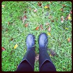 Loved making use of the wellingtons