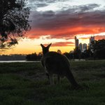 View of Perth at Sunset from the island near the B & B