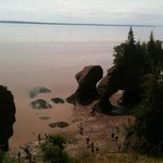 View of Fundy National Park Hopewell Rocks.