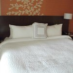 Fairfield Inn & Suites Elmira Corning照片