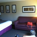 ภาพถ่ายของ AmericInn Hotel & Suites Duluth South _ Black Woods Convention Center