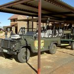 Safari Transport - Land Rover