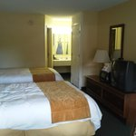Foto di Econo Lodge Inn & Suites - Williamsburg