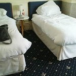 Branston Lodge Guest House resmi