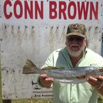 Rainbow Trout caught in Rockport
