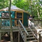 Green Yurt at Harmony Hill