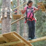 Aerial Adventure Park and Zip Line