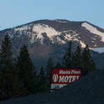 Shasta Pines Motelの写真
