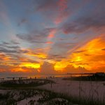 Foto di Hyatt Siesta Key Beach Resort, A Hyatt Residence Club