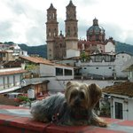 Photo de Hotel Best Western Taxco