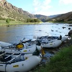 Foto de RIGS Adventure CO Fly Shop and Guide Service